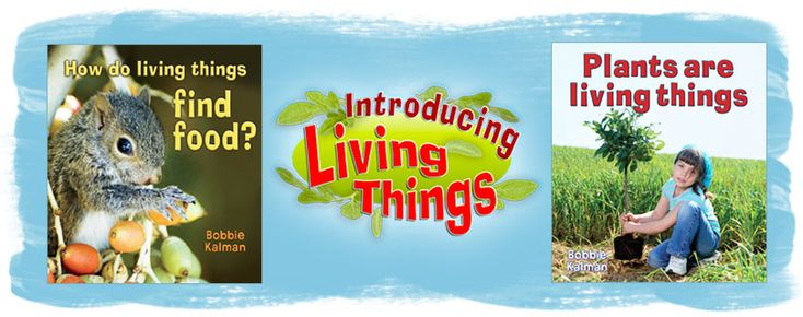 Introducing Living Things series (Crabtree Publishing)_  introduces young children to plants, animals, and people as living things with the same basic needs. Illustrated with large photographs, these books bring to life the early learning concepts about the natural world.  Grades K-3