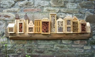 This series of Insect Hotel structures was built for Barton Hill Walled Garden Project and is intended to resemble a city skyline. Its attached to a wall in a shady area at the bottom of the garden.