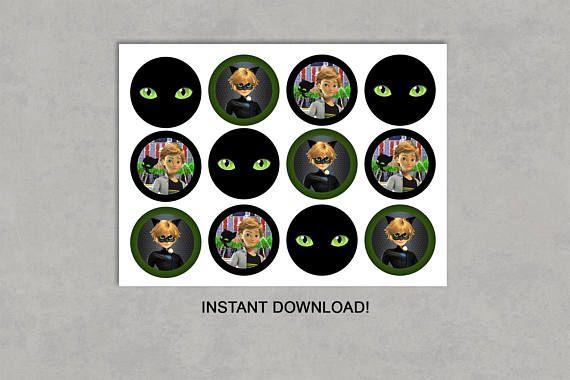 Cat Noir Miraculous Inspired Cupcake Toppers Printable Miraculous Ladybug Party Ladybug Party Cat Noir Miraculous