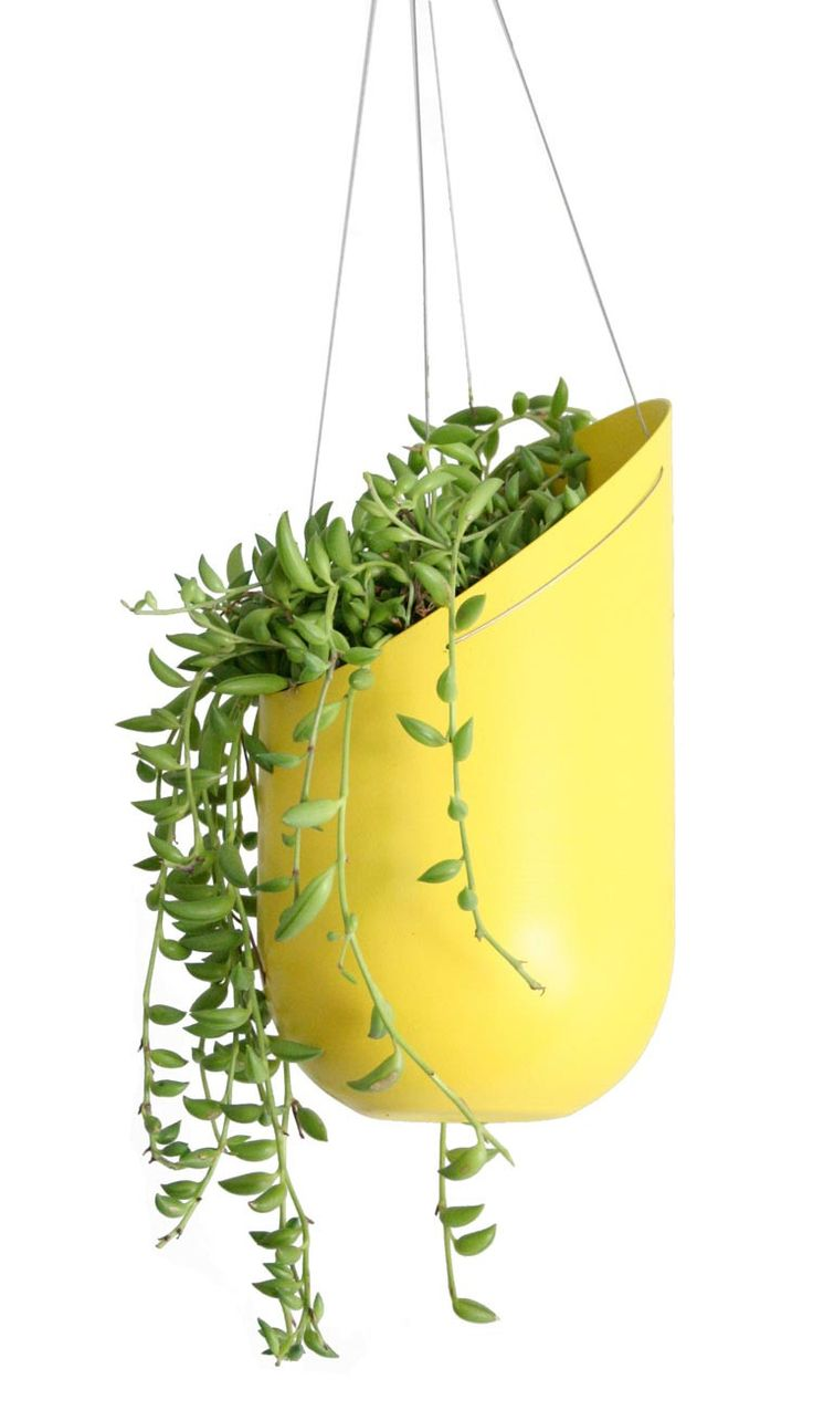 Outdoor Hanging Planter