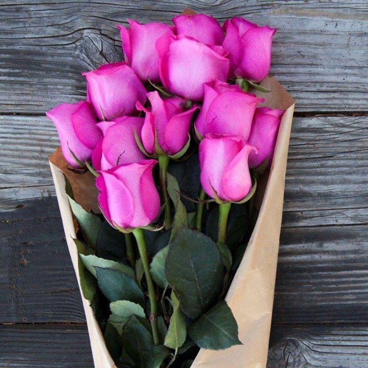 Fuchsia #Pink Roses
