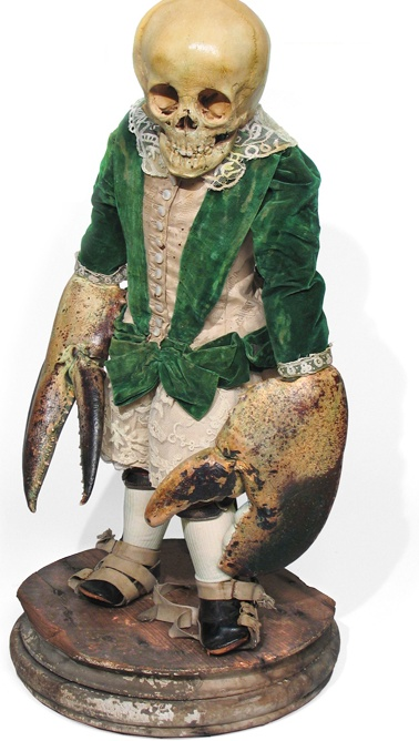 Crab people: Skull Bones, Victorian Taxidermy, Art Passar, People Art, Bones Art, Art Death, Victorian Dresses, Skull Art, Scott Wilson