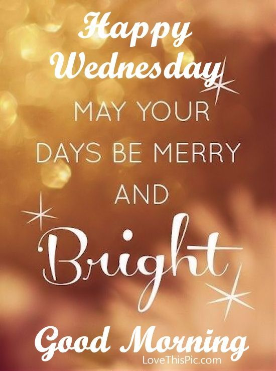Happy Wednesday~Thank you M! That pin of your two beauties is making this day Merry and Bright! I'm still smiling in enjoying their faces! x
