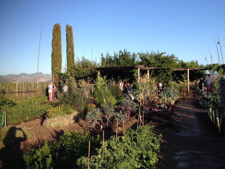 The organic gardens at Round Pond Estate's Summer Solstice Party. Napa Valley.