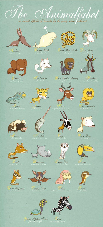 Cartazes divertidos de animais