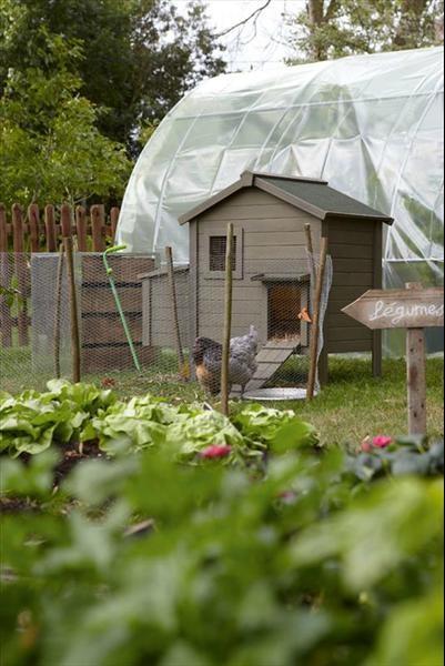 Pin by leroy merlin on jardin pinterest gardens - Abri de jardin en bois naterial tepsa ...
