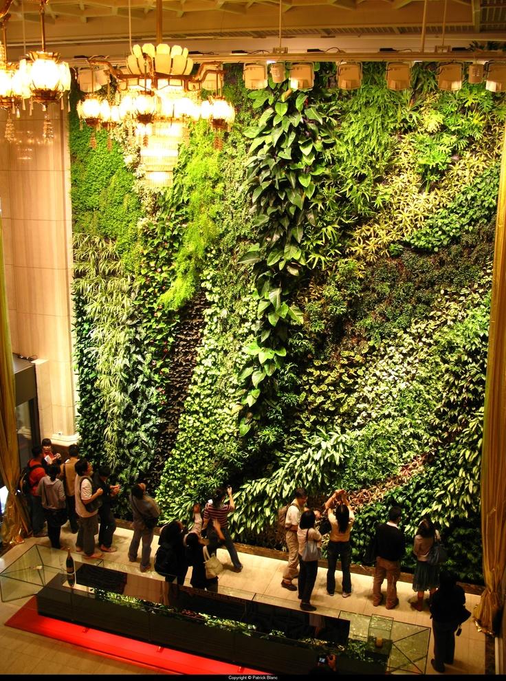 Impressive indoor vertical garden grassy creativity for Living walls vertical gardens