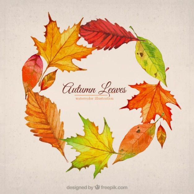 秋の葉のイラスト Premiumベクター