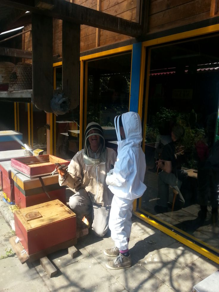 De Bijenstal in Opperdoes: Alles over de bijen, hoe ze werken en leven de imker vertelt u alles over de honingbij. Insecten eten ´op afspraak'