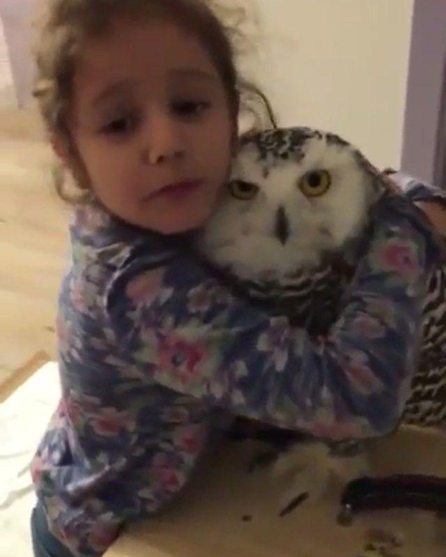 Owl-ove you! #9gag @9gagmobile