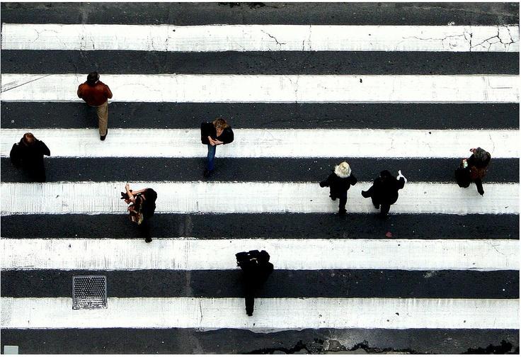 striped streetLove Dogs, Zebras Stripes, Inspiration, Cities Street, White, Crosses, People, Black, Photography
