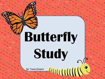 This is a mini science unit focused on butterflies. The unit includes a Butterfly KWL Chart, a Label the Butterfly and Caterpillar page, What Do Butterflies Eat? page, Draw a Buttefly Habitat sheet, My Butterfly Info page, Compare and Contrast: Butterfly vs. Ladybug, Butterfly Thinking Map, and a Butterfly Reader. These activities are designed for younger elementary students.