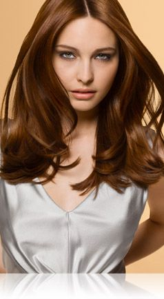 My new fall hair color, doing it tomorrow, cross your fingers!!! 6NBG Salon Blends Light Amber Brown - Precision foam permanent colour shades | John Frieda®
