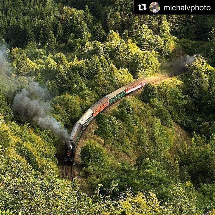 """Parný rušeň 464.001 """"Ušatá"""" na jazde po Stredoslovenskom okruhu. Vlak vychádza z Kremnického tunela.  #praveslovenske od  @michalvphoto ...... #slovensko #slovakia #kremnica #train #railway #trees #forest #nature #landscape"""