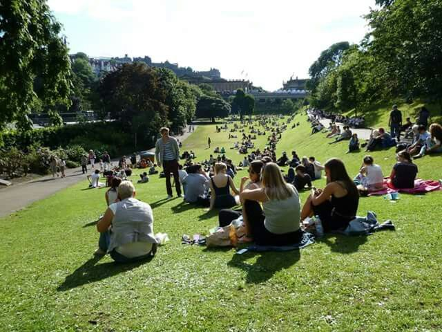 Princess St gardens in the sun!