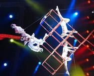 Aerial, Trapeze acts