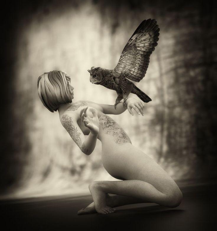 The Owl by Vítězslav Koneval