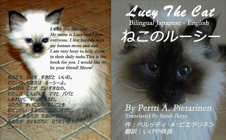 Bilungual Japanese - English Book Cover