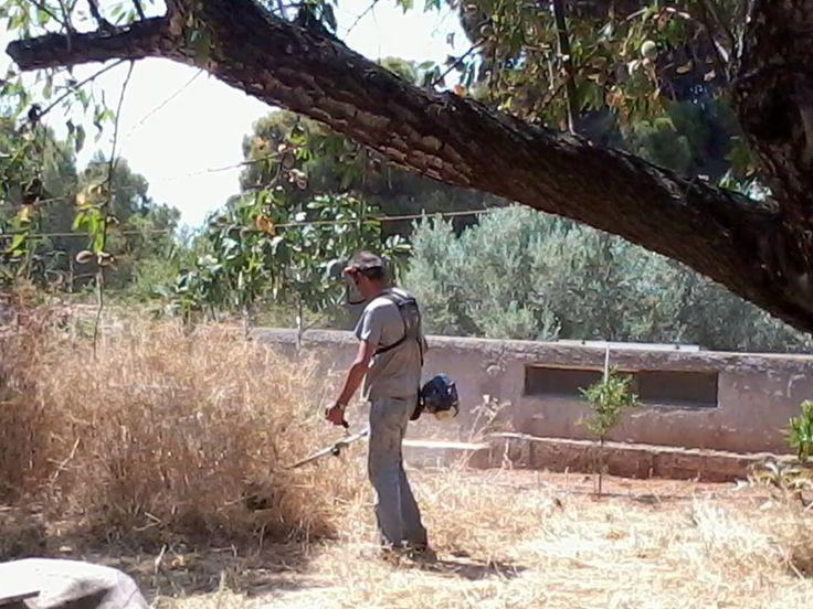 Υπαίθριες δραστηριότητες www.hortokoptiki.gr
