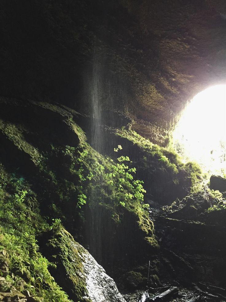 Charleston Caves // New Zealand