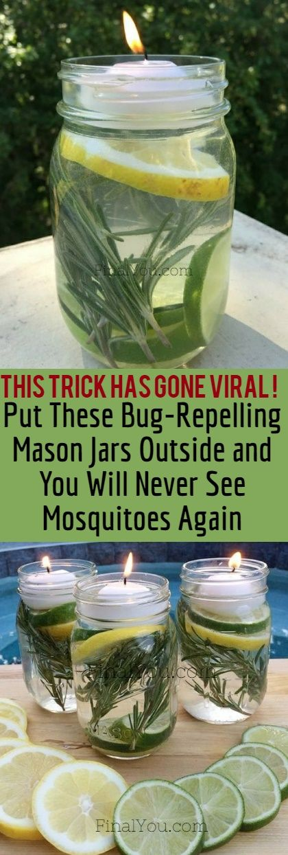 Fabulous Are Mosquitoes Giving You A Hard Time This Bug Repelling Recipe Will Completely Solve