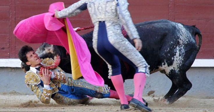 Ταύρος τρυπάει με μανία νεαρό ταυρομάχο μέσα την μεγαλύτερη αρένα της Ισπανίας Crazynews.gr