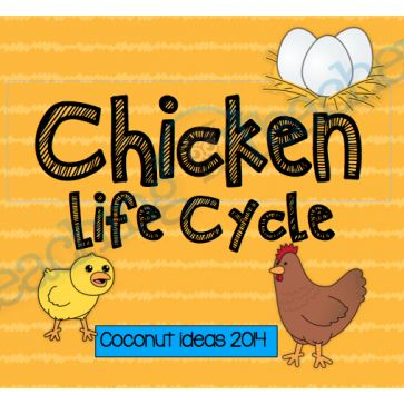 Chicken Life Cycle- Writing templates