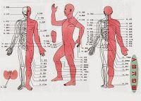 人體10大保健要穴按摩方式!這篇值得您收藏下來!