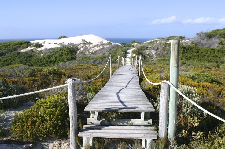 De Hoop Nature Reserve  Cape South Africa, part of Whale Trail Hike