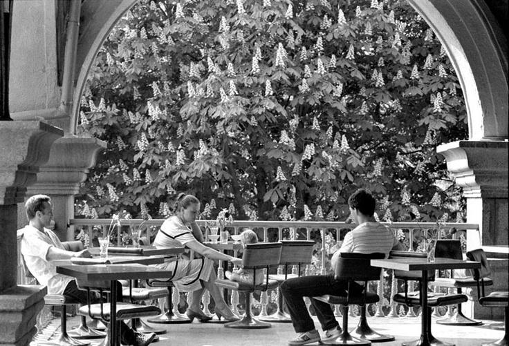 Киев. Кафе у входа в Пассаж. 1985 г.