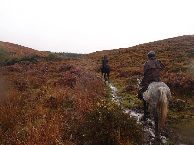 Nästa äventyr: Ridtur på Irland