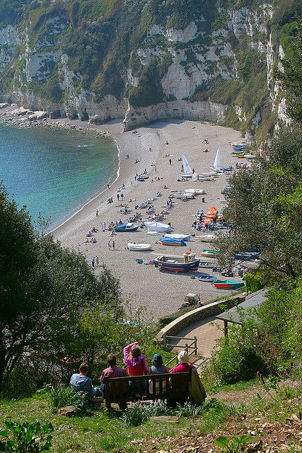 Looking down from the coast path to Beer beach. Beer Village   South Devon   England