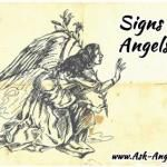 Angel Signs ~ 12 Signs Your Angels Are With You!