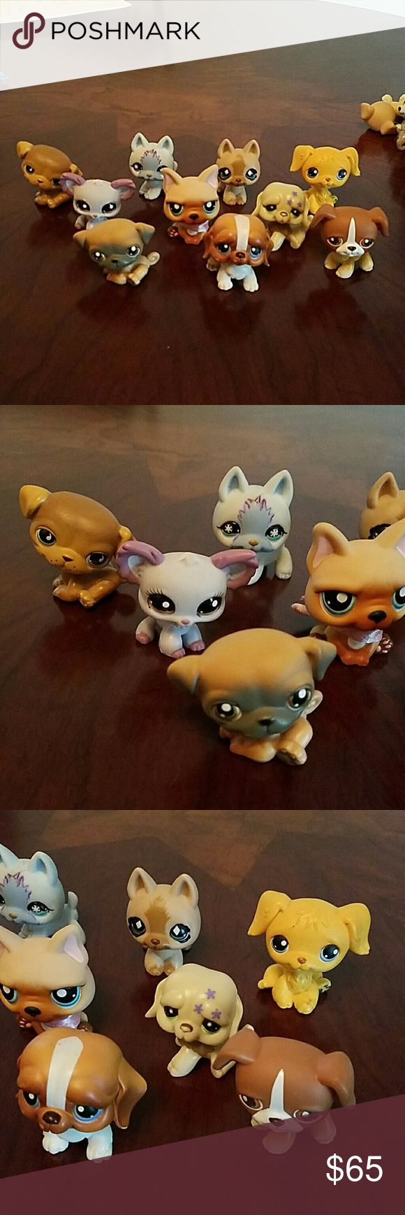 Lot #15 LPS dogs Littlest pet shop dogs. $3 each. Must but 5 or more. Check my page for tons more LPS. Let me know which ones you want and I will make a separate listing for you. Other