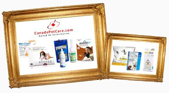 Browse Pets Supermarket Coupons, Code, Deals and Discount deals for thousands of online top stores From 6395343253  http://www.coupon4pets.com/stores/