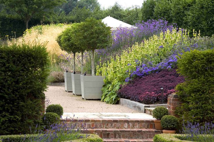 Anthony Paul Landscape Design- Coldharbour garden