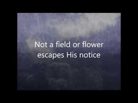 """Sparrows""- Jason Gray (Lyrics) - YouTube"