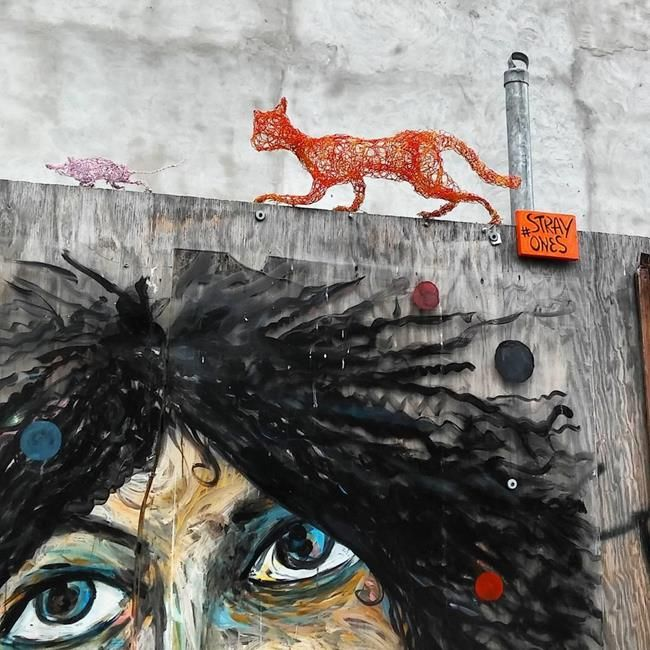 Kedi Sevdalısı Heykeltraş Strayones'tan Tel ile Tasarlanmış Kedi Heykelleri Sanatlı Bi Blog 11
