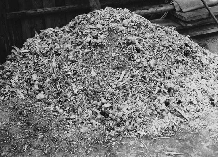 Murder industry at full bore: A pile of human remains at Buchenwald Concentration Camp, near Weimar, Germany, Apr 1945.