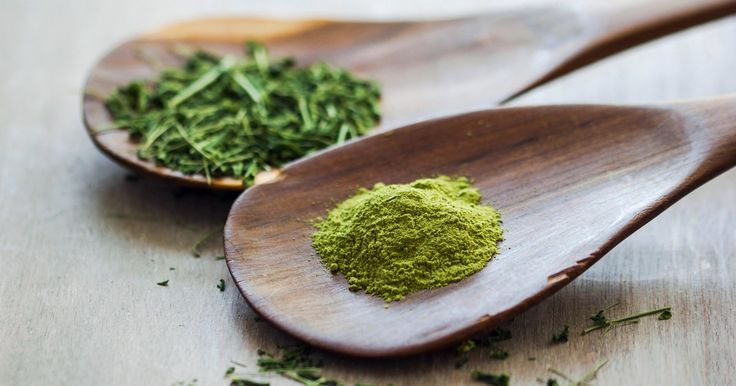 Why Moringa Is the New Superfood You Need to Know About