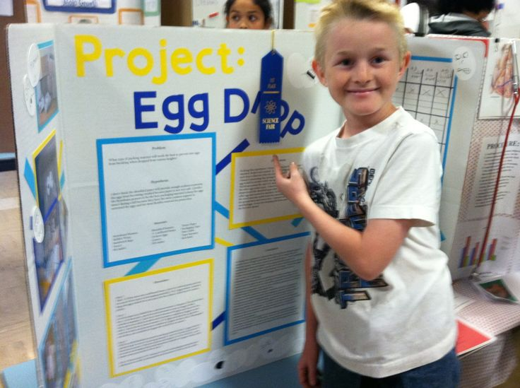 science projects with eggs Find and save ideas about egg experiments on pinterest | see more ideas about egg vinegar experiment, ideas for science fair and kid experiments.