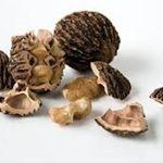 Buy Black Nuts Rich In Nutrients Online