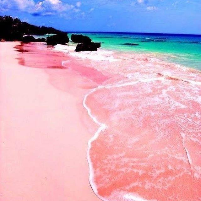 Au Bahamas, le sable voit la vie en rose...  #soleil #plage #sun #sunshine #été