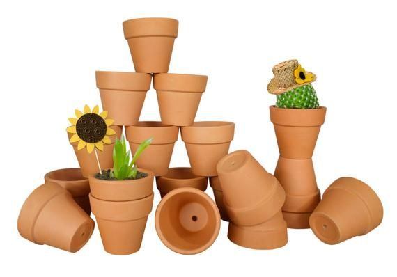 20 Pack 2 1 Mini Terra Cotta Clay Pots Great For Succulent Cactus Nursery Planter Diy Craft Projects We In 2020 Succulent Pots Terra Cotta Clay Pots Clay Pots