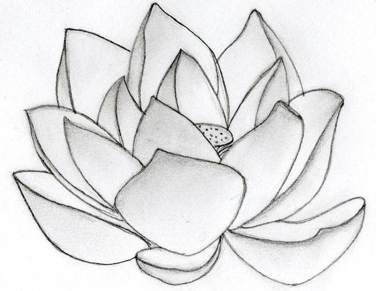 dessiner une fleur de lotus