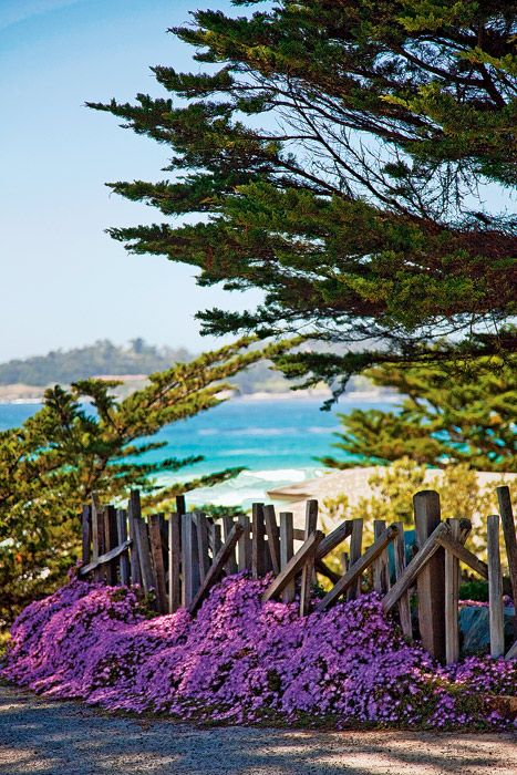 Carmel-by-the-Sea--very favorite place to visit  in California