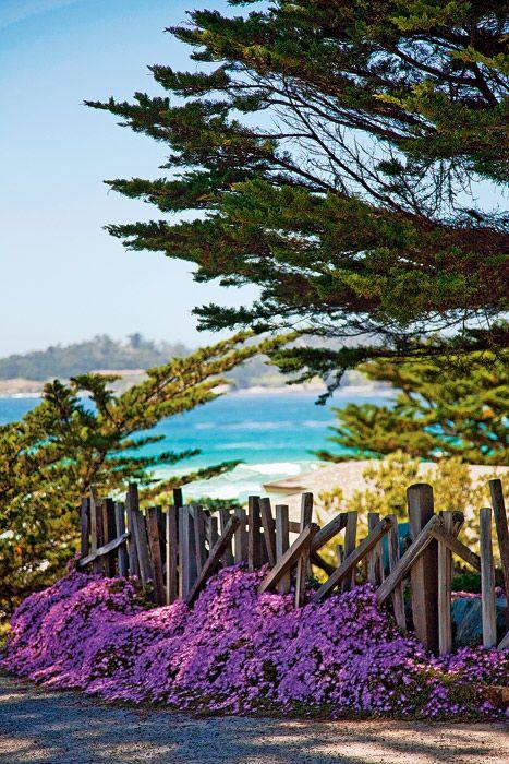 Carmel-by-the-Sea, CA. <3