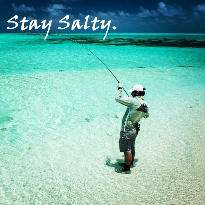 89 best summer fun images on pinterest vacation for Best fishing spots in the keys