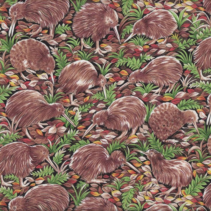 New Zealand Kiwi Birds Ferns Leaves NZ Wildlife Quilt Fabric - Find a Fabric.  Available to purchase in Fat Quarters, Half Metre, 3/4 Metre, 1 Metre and so on.