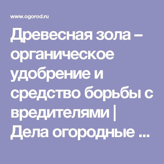 Древесная зола – органическое удобрение и средство борьбы с вредителями | Дела огородные (Огород.ru)